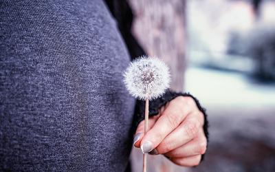Untersuchungen in der Schwangerschaft: Ein Erfahrungsbericht voll Vertrauen und Liebe