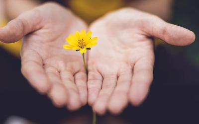 IN UNSEREN HÄNDEN – unsere Heilung und die Heilung der Welt