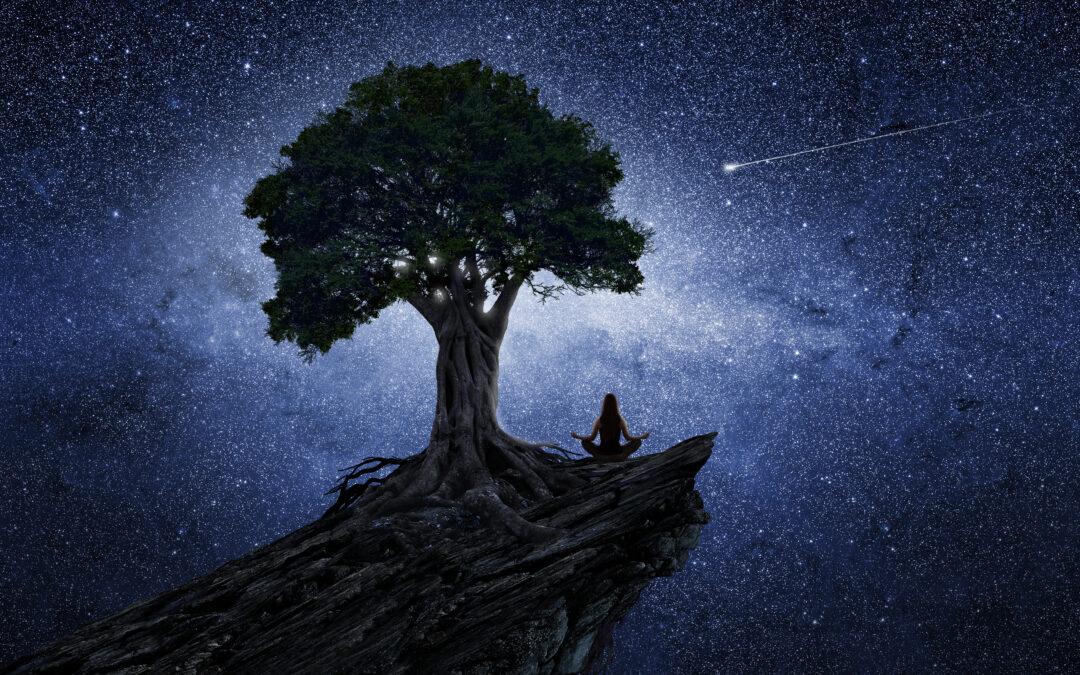 """""""Willst du Medizinmacht? – Metamorphische Reise in deine Seelenunterwelten zur Befreiung deiner Wahrheit"""""""